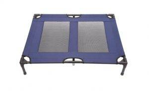 Best Elevated Cooling Beds for Cockapoos