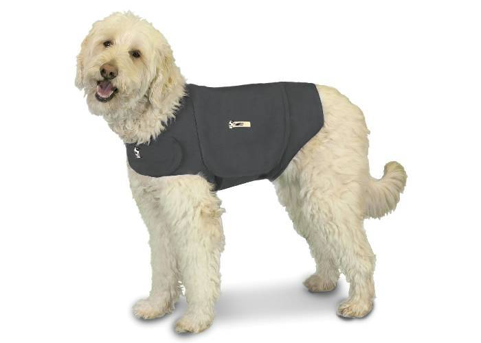 Do Anxiety_Thunder Jackets Work For Cockapoos